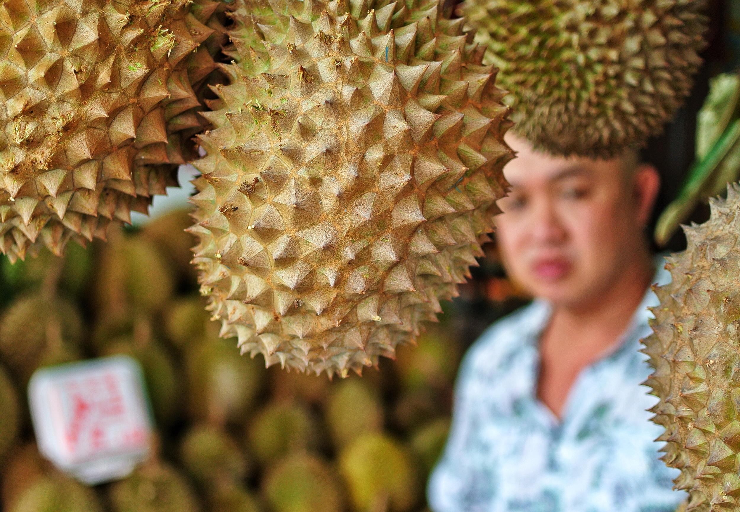 Trengganu St Durians