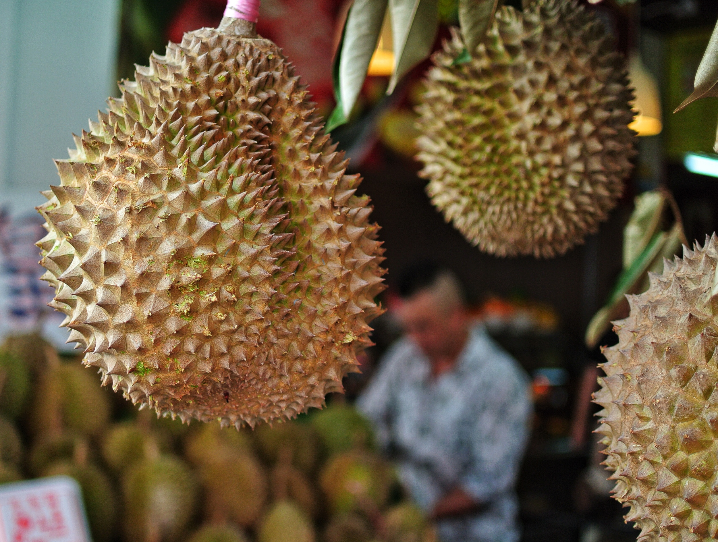 18.5mm: smells a bit but tasty.....Singapore Durian