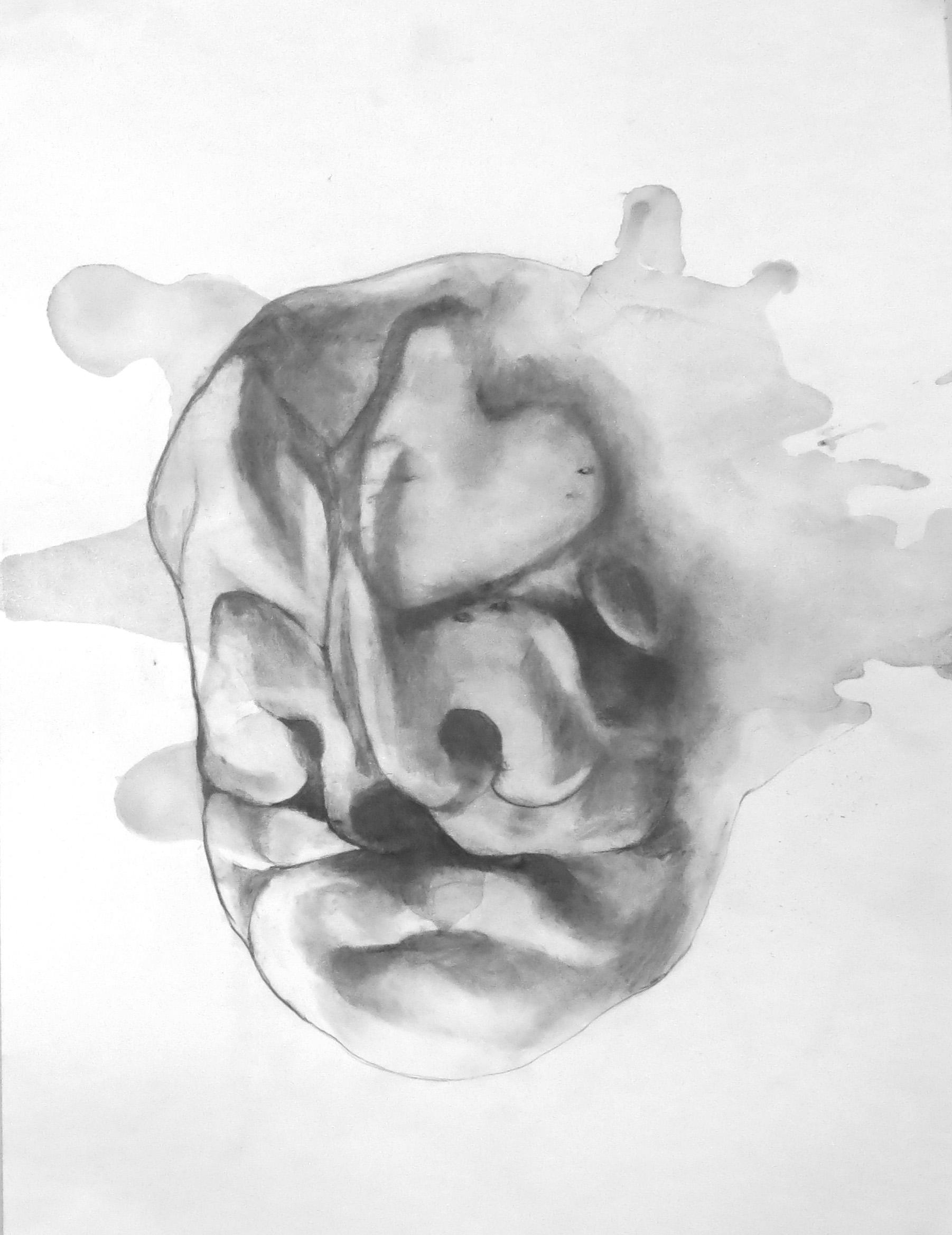 fetusface4.jpg