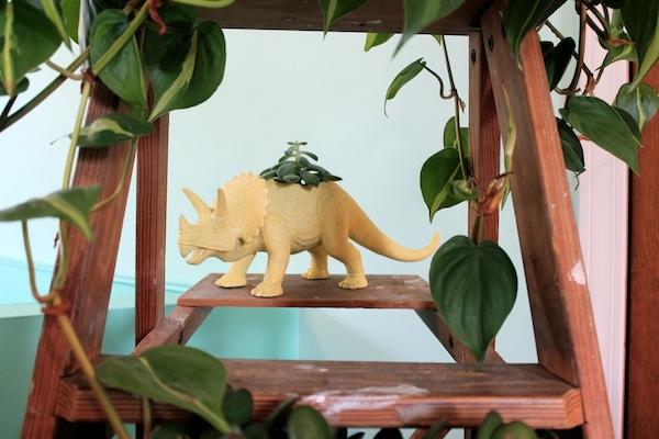 dinosaur planter.JPG