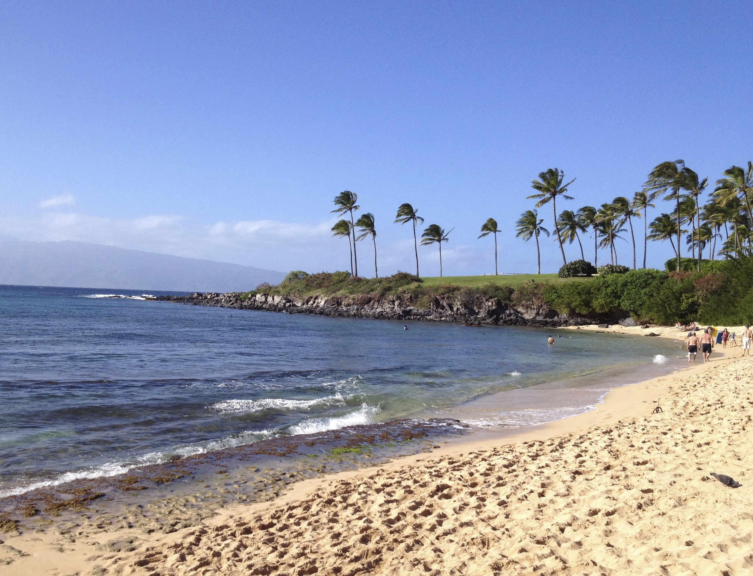 Maui, February 2013