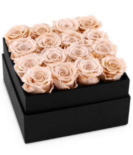 1. OnlyRoses Infinite Rose Plaza