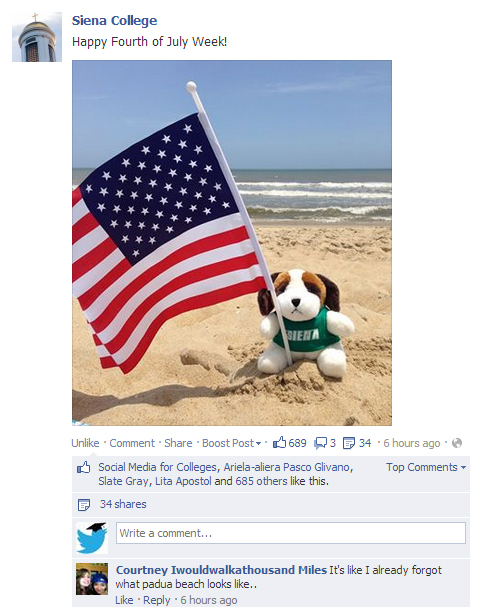 Cute animals (even stuffed ones) always win the internet. Always.