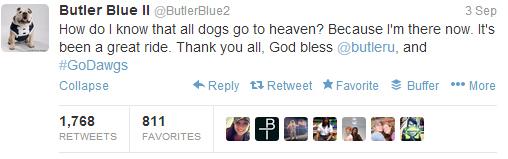 So sad, but so sweet. RIP Blue II!