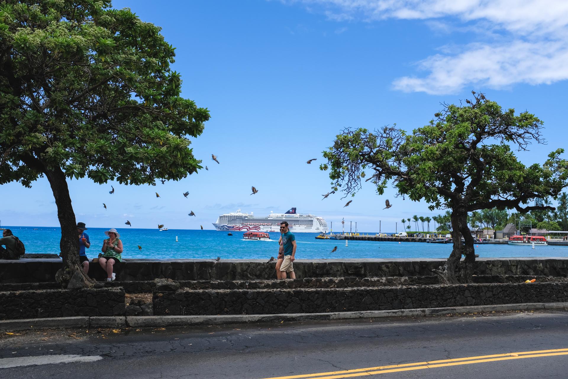 Hawaii-6435.jpg