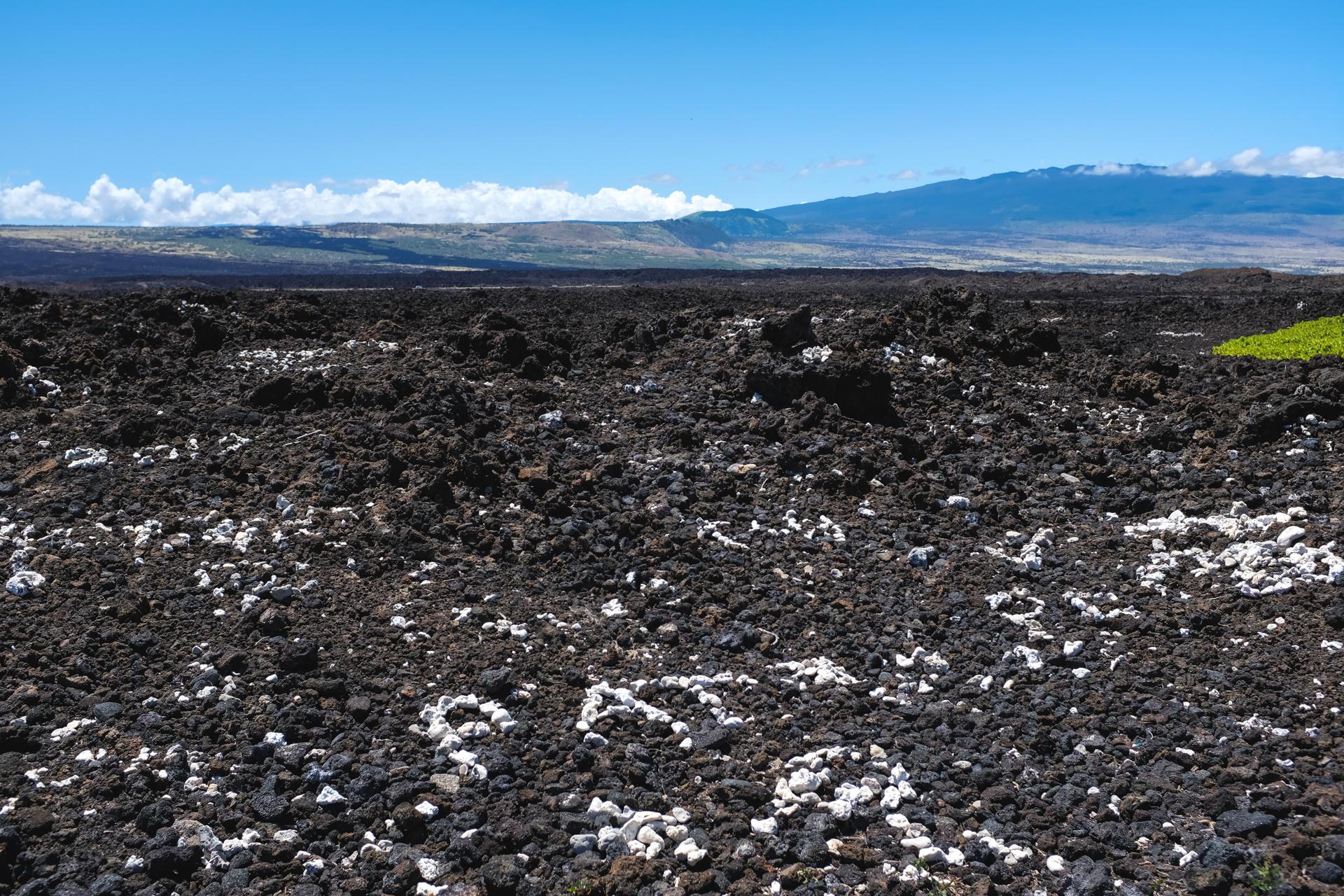 Hawaii-6610.jpg