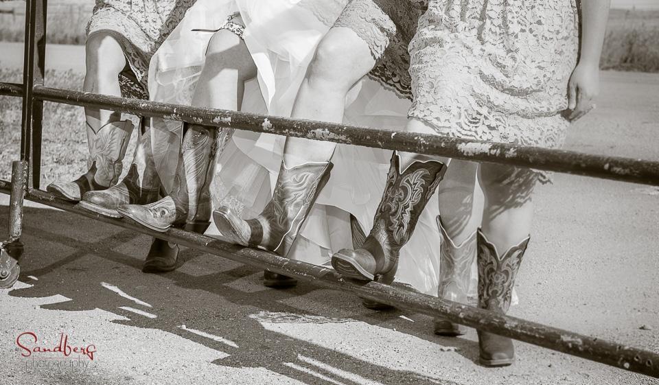 Sandberg_Photography__D8K2094.jpg