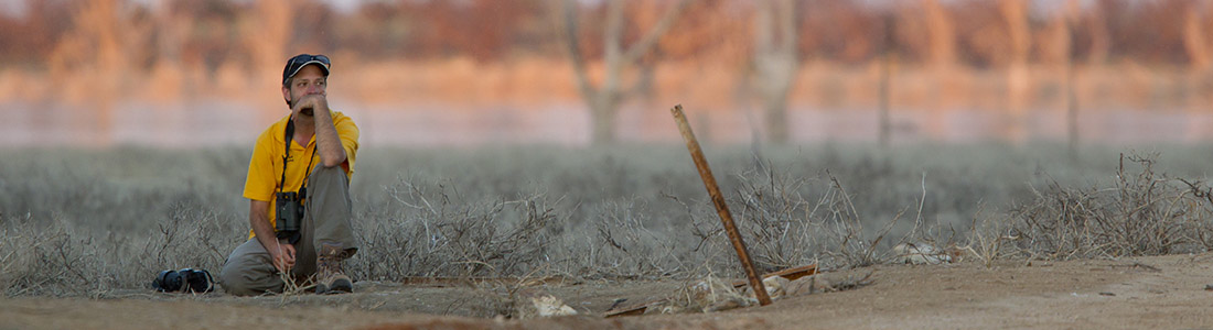 Waiting for the sun to warm up the lizards. Gluepot Reserve, South Australia, 2011. Photo by Tobias Hayashi.