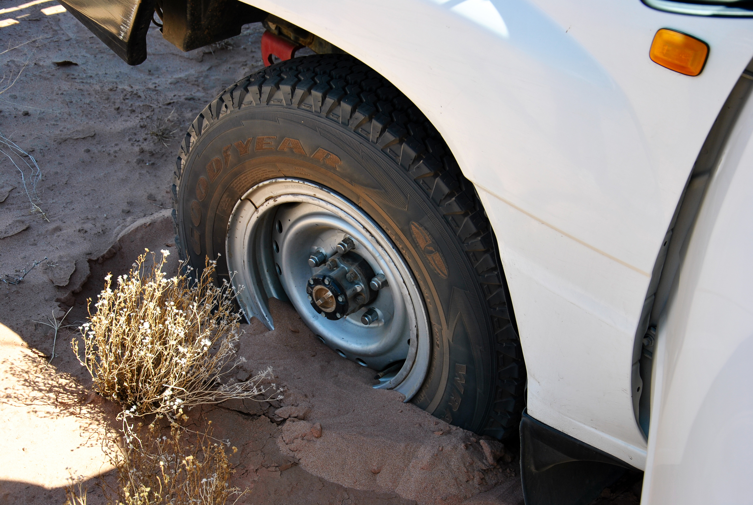 The ANU Landcruiser, bogged in the Finke River within an hour of getting to the field.