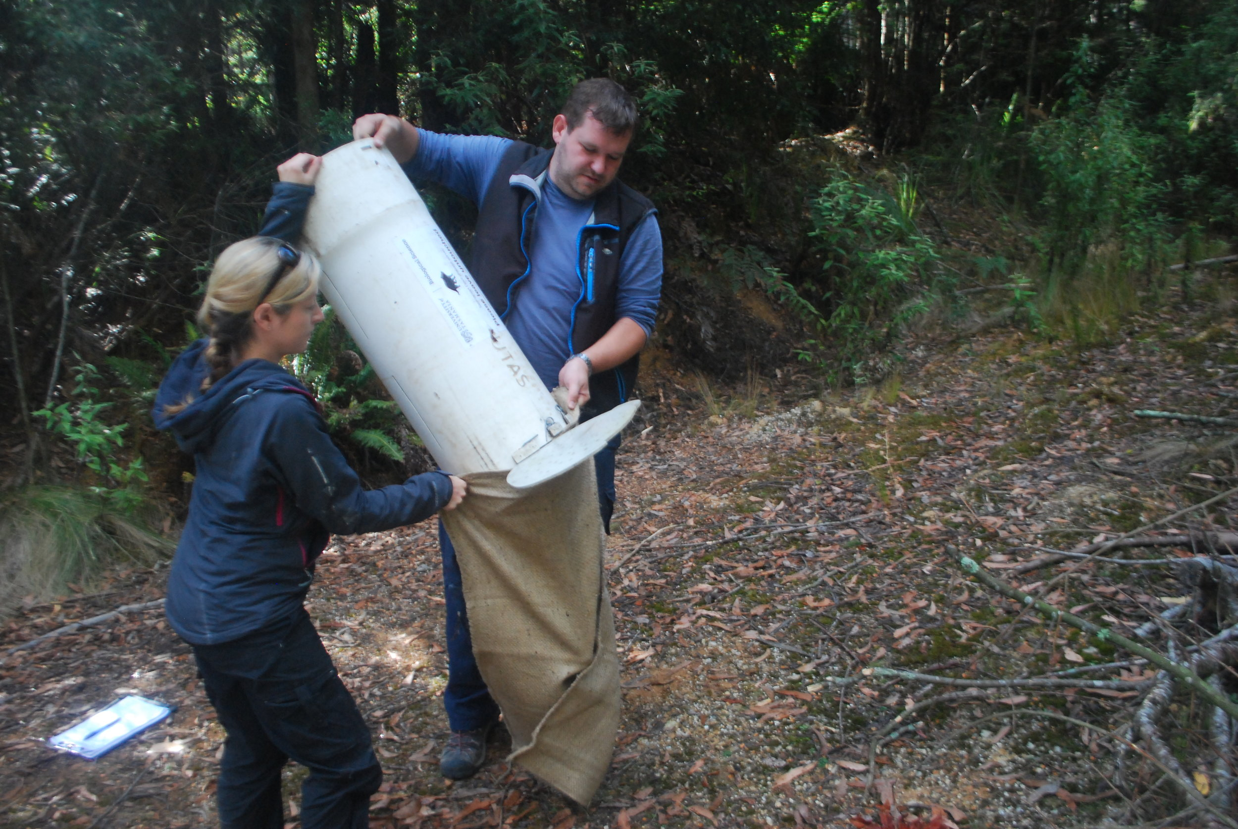 Due to the weight of the devil and the size of the trap, this requires two people: one of the many tasks for volunteers!
