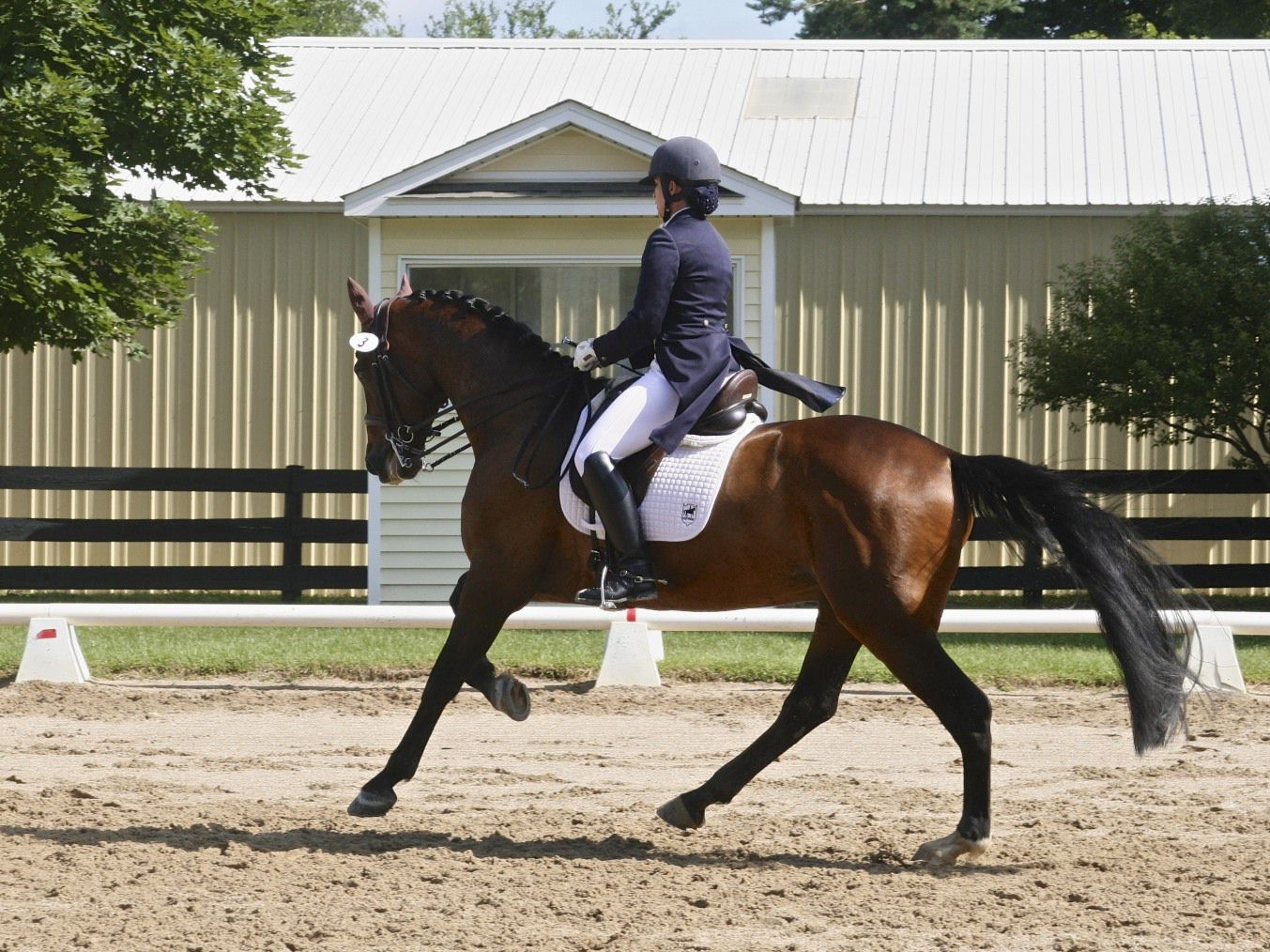 Westerstorm&Kate Fleming-Kuhn, owned byPhil Pan & Deb Klamen, were both the KWPN highpoint as well as the Grand Prix highpoint