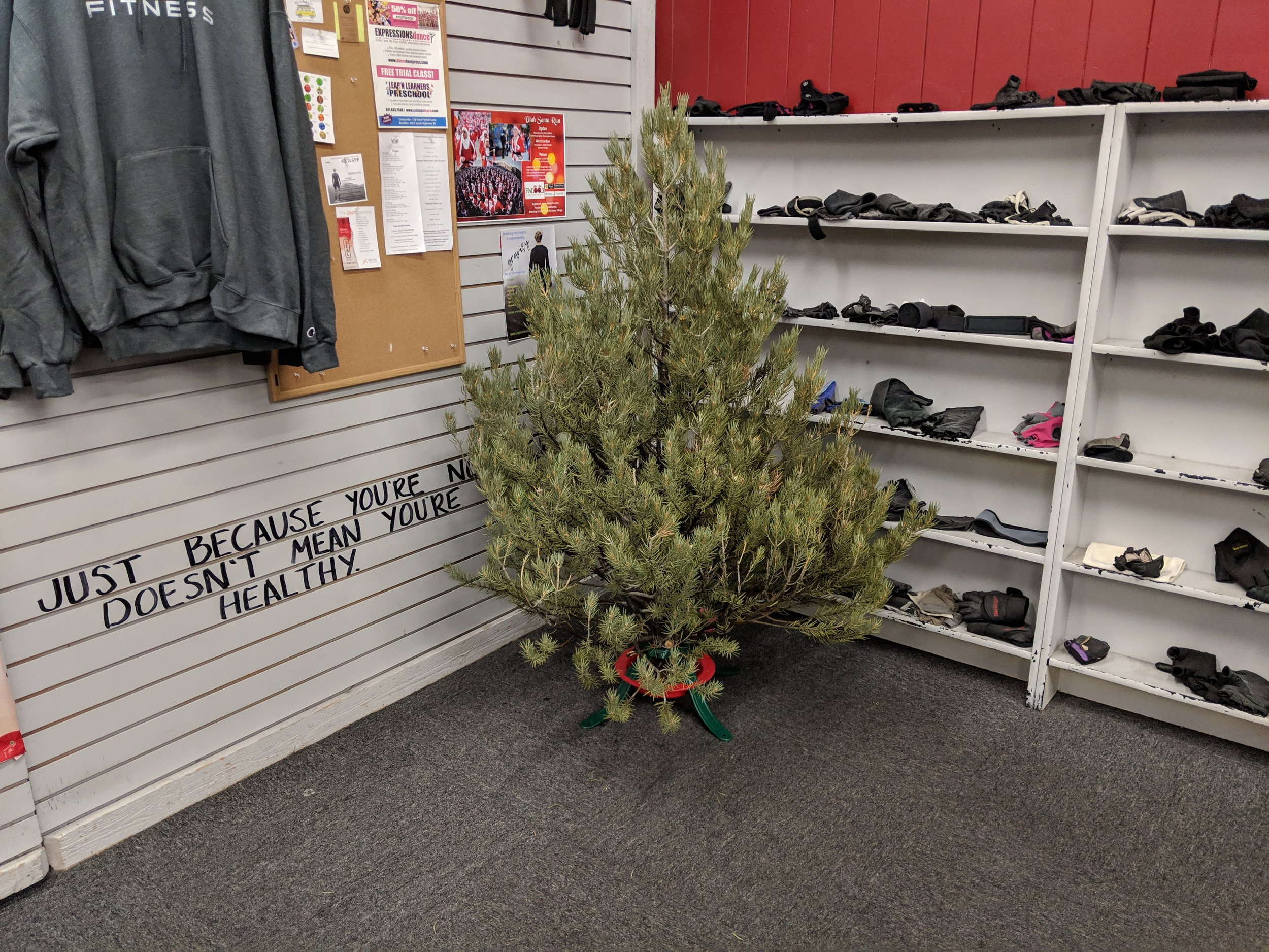 Tree #2! We've never had a tree at the gym for Christmas before and we have exactly NO decorations for it. If you had and ugly, random, spare ornement laying around that you were just going to throw away anyway, we'd welcome it here for the holidays! :)