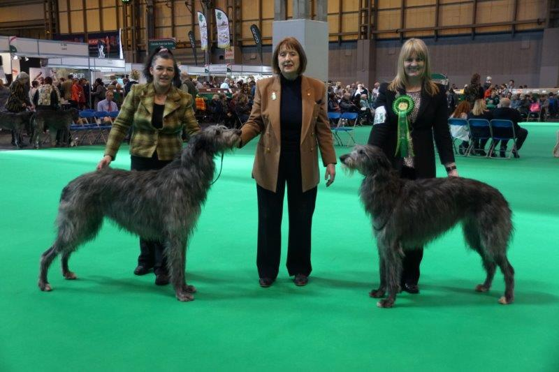 Lenni & Gobi with judge Joan Wragg                                                 Thank you Glenis Peach for the photo