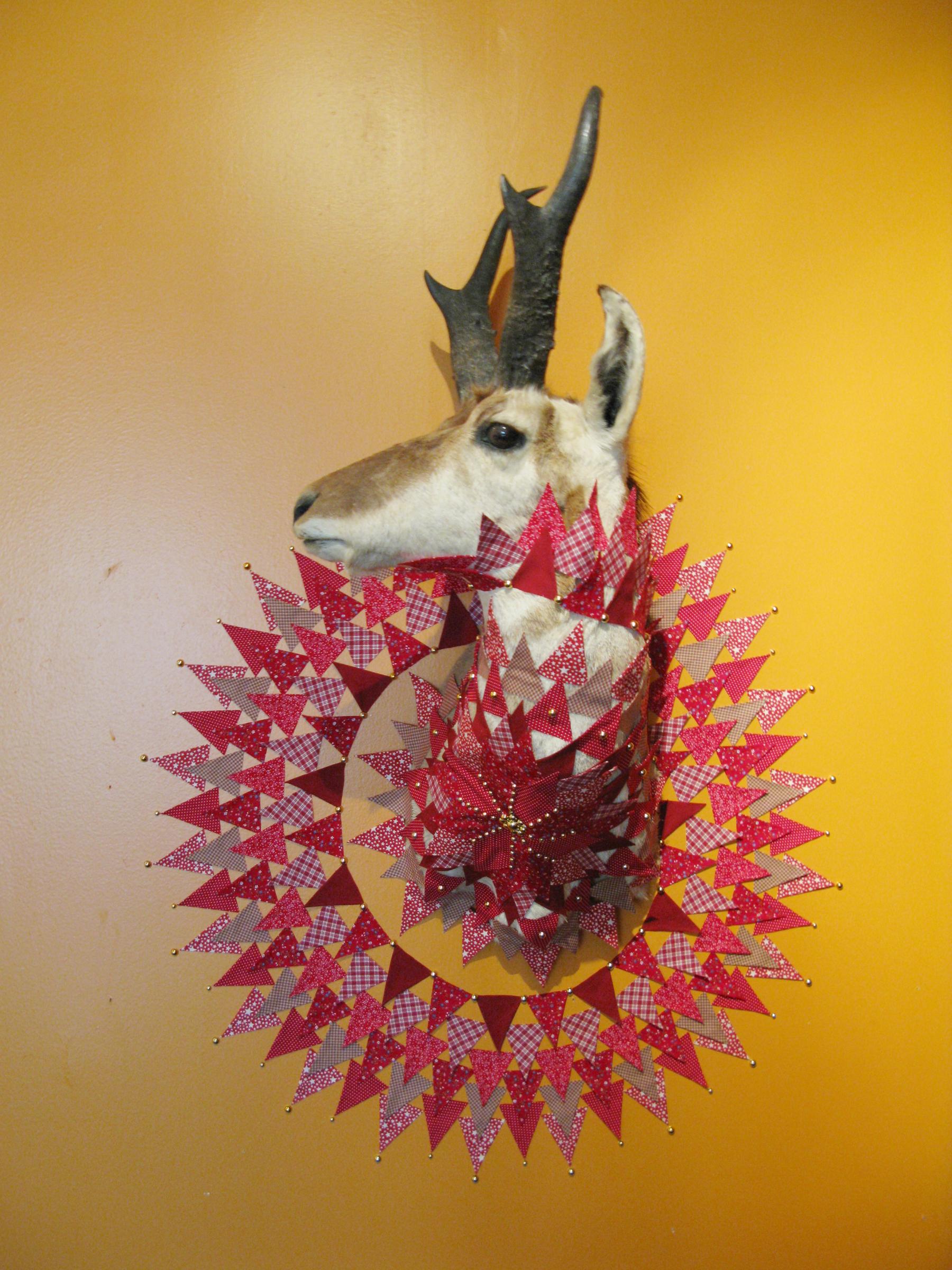 Antelope1.JPG