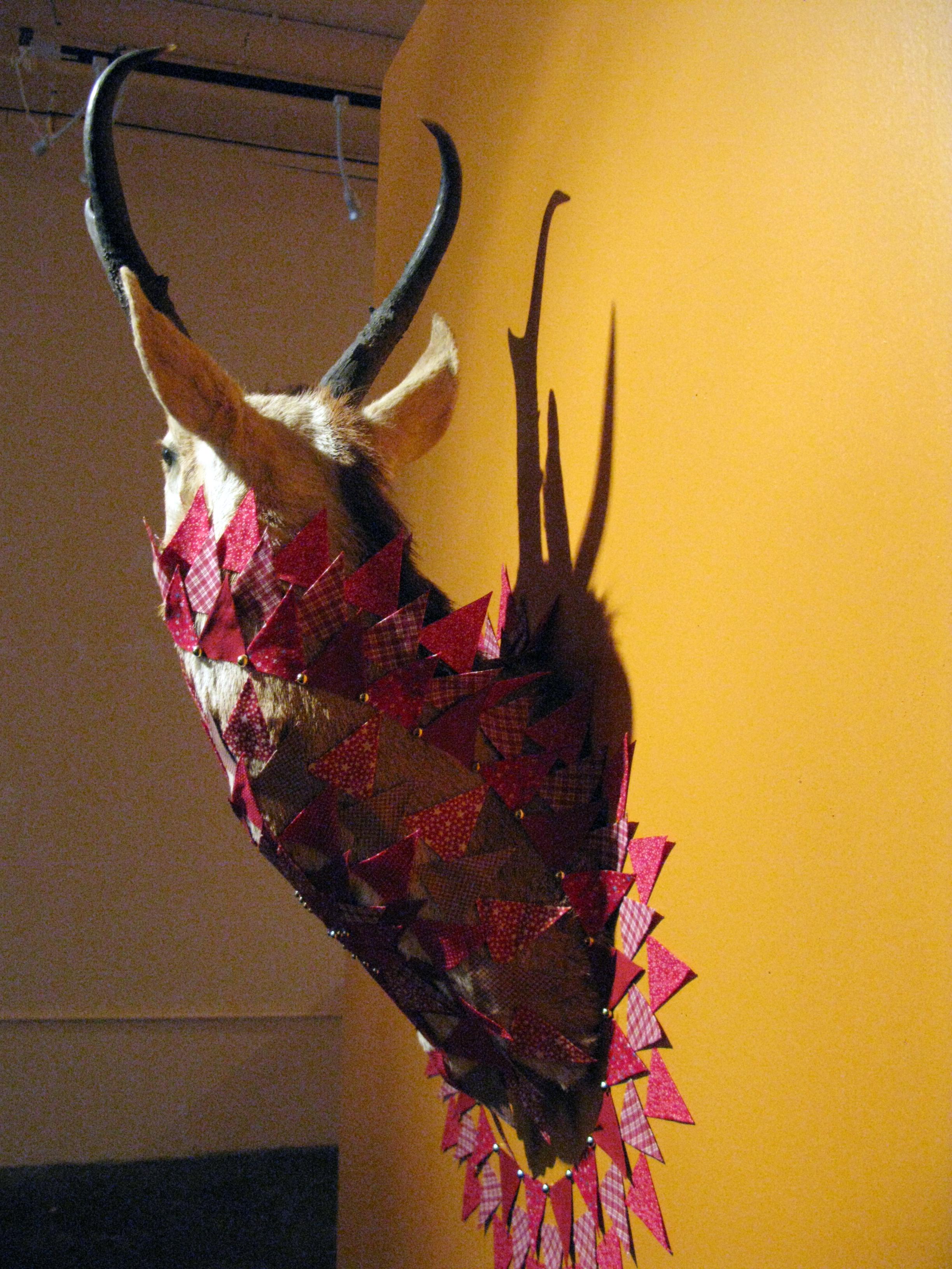Antelope3.JPG