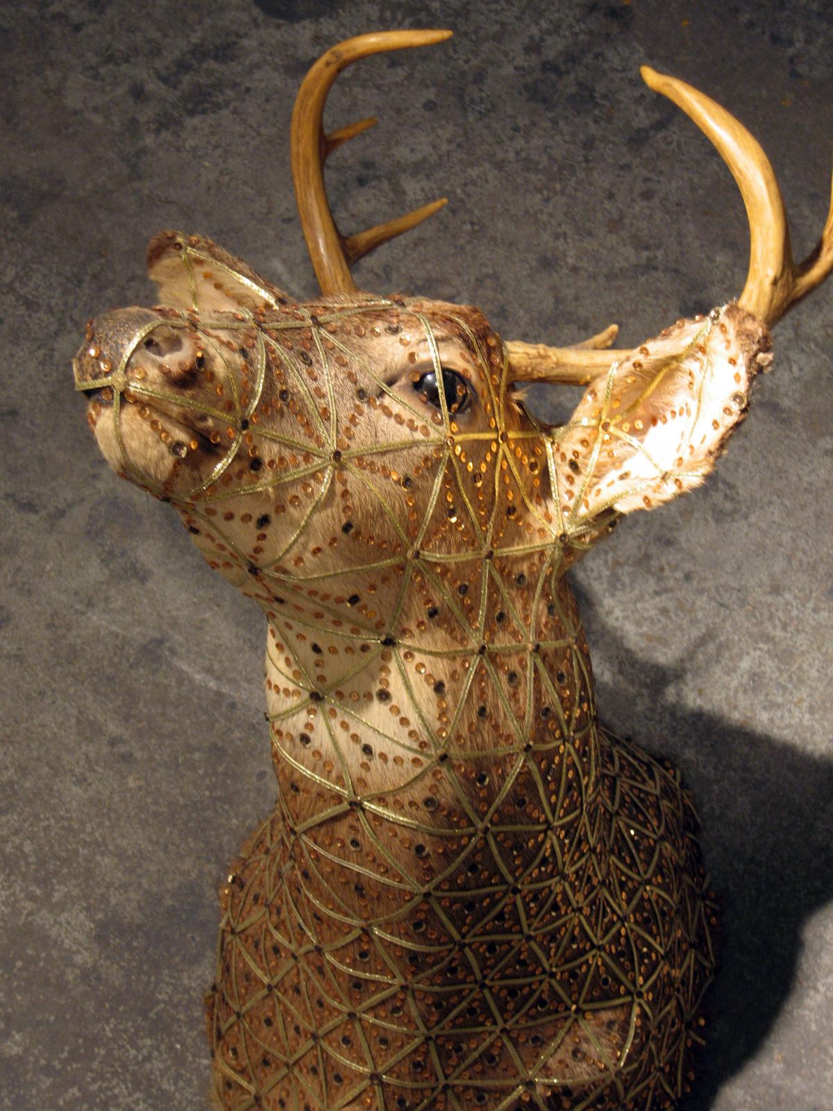 Deer3.JPG