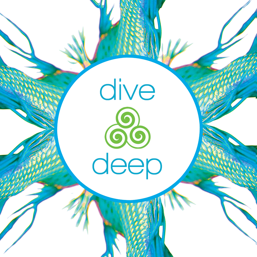 tiwia logo dive deep color for fb insta icon aug 2019.png