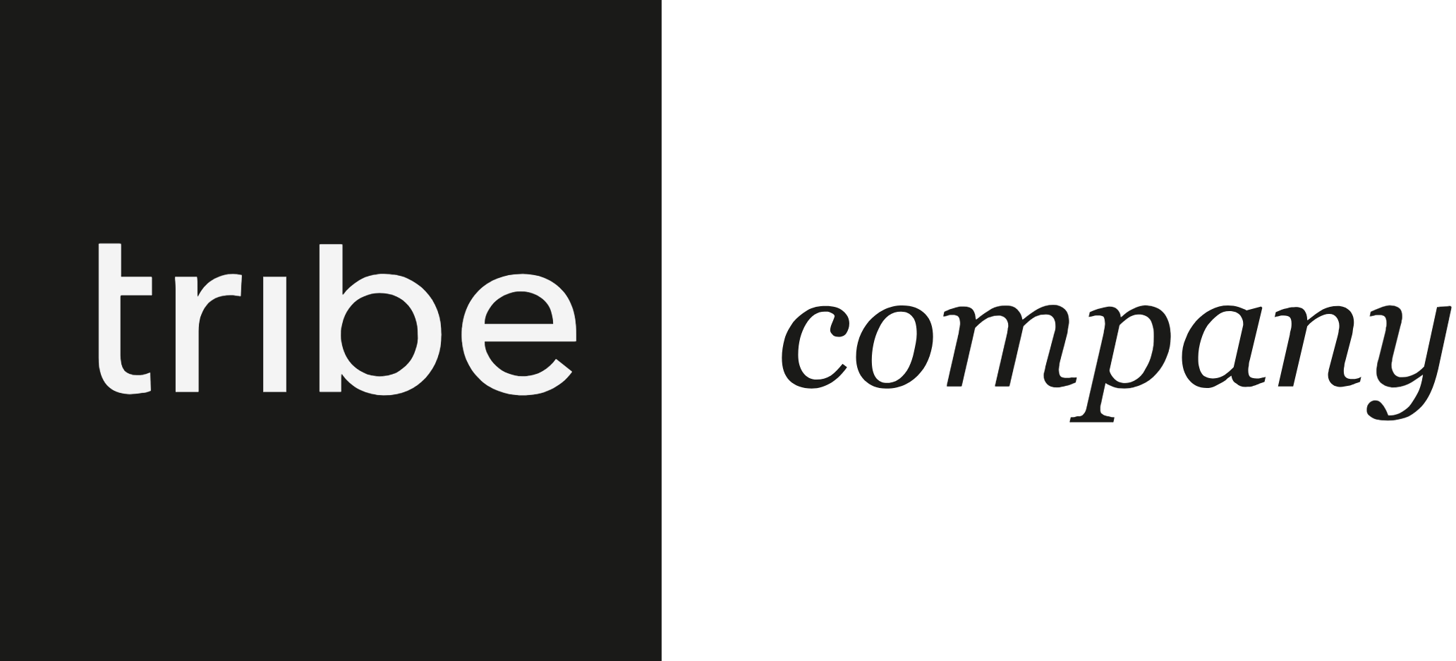 Tribe Company logo