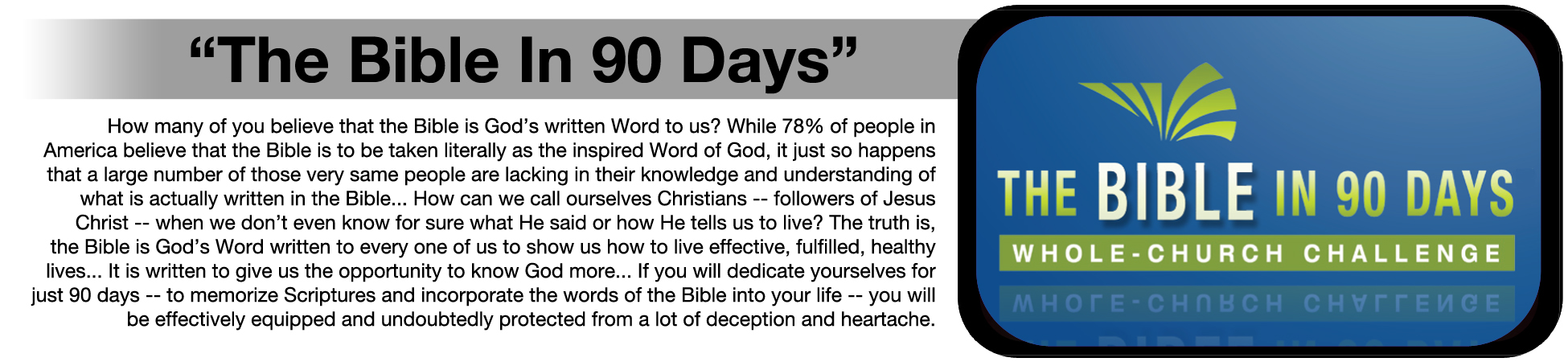 The Bible In 90 Days.jpg