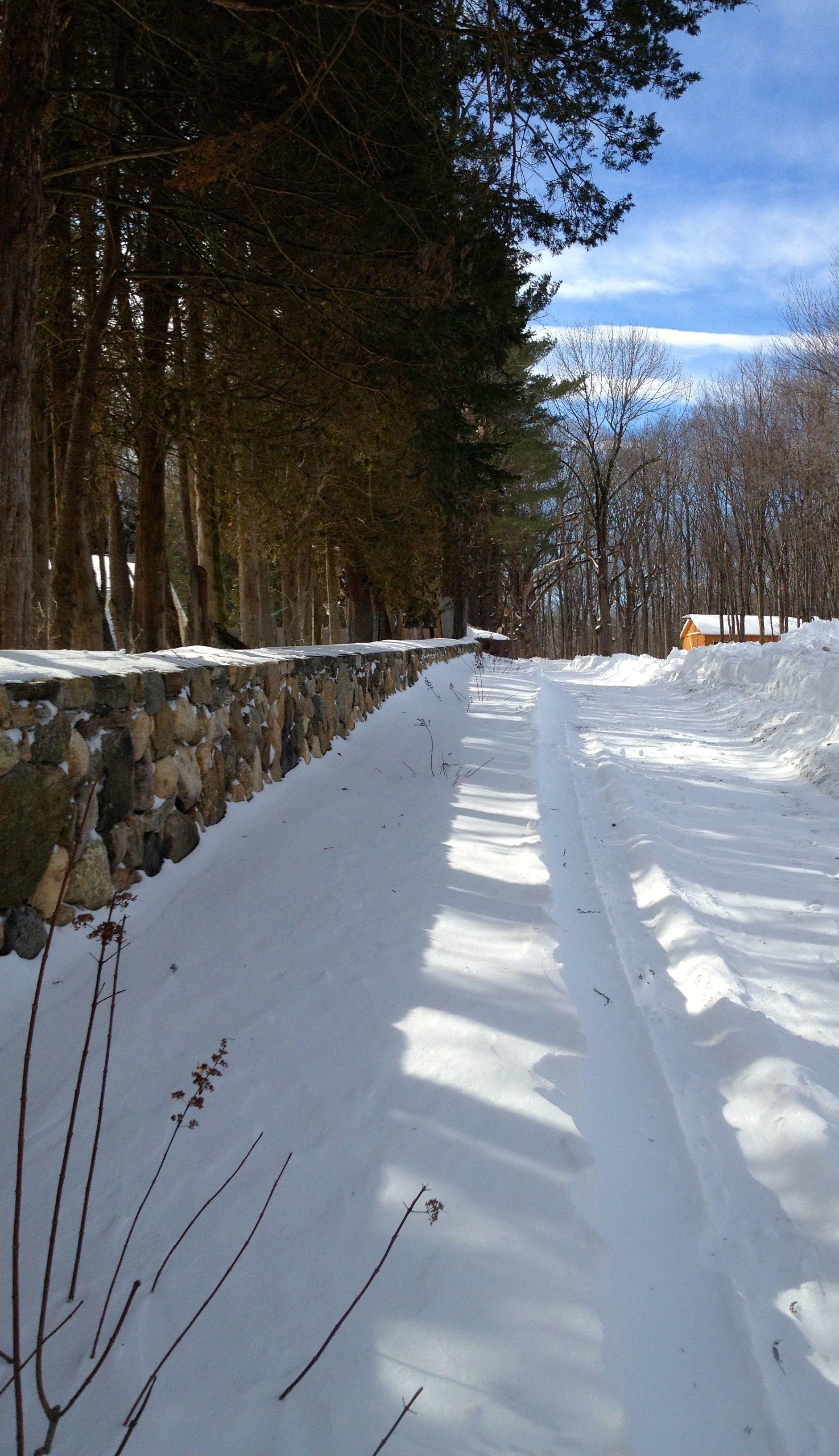 Snow Driveway.jpg