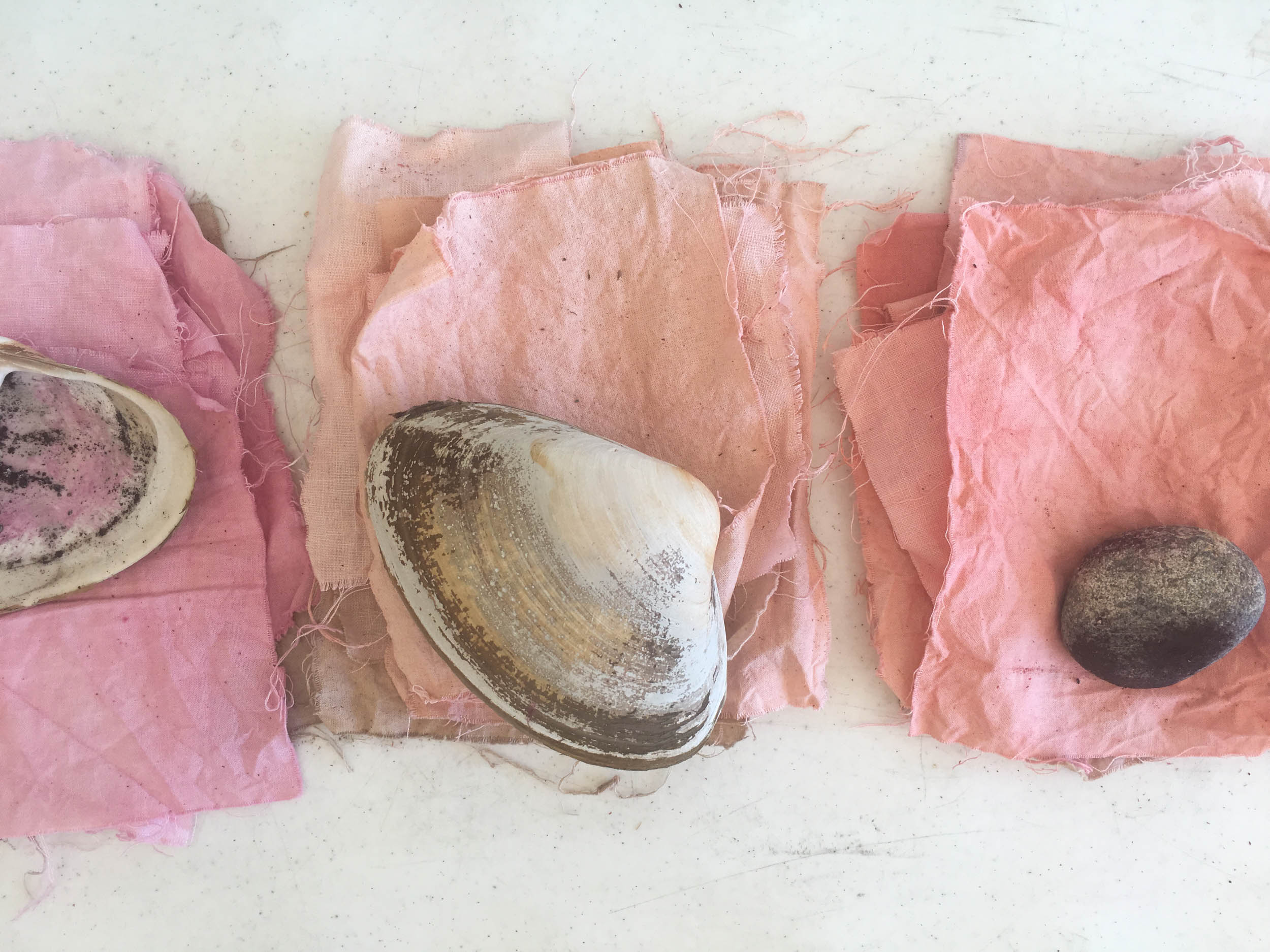 Warm color swatches-shells (1 of 1).jpg