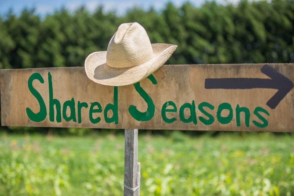 Shared Seasons Newsletter Oct 16, 2014.jpg