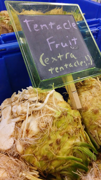 OK!  Celery Root might LOOK like it should be named Tentacle Fruit, but it's actually REALLY TASTY!  Give it a try as soup or mash!