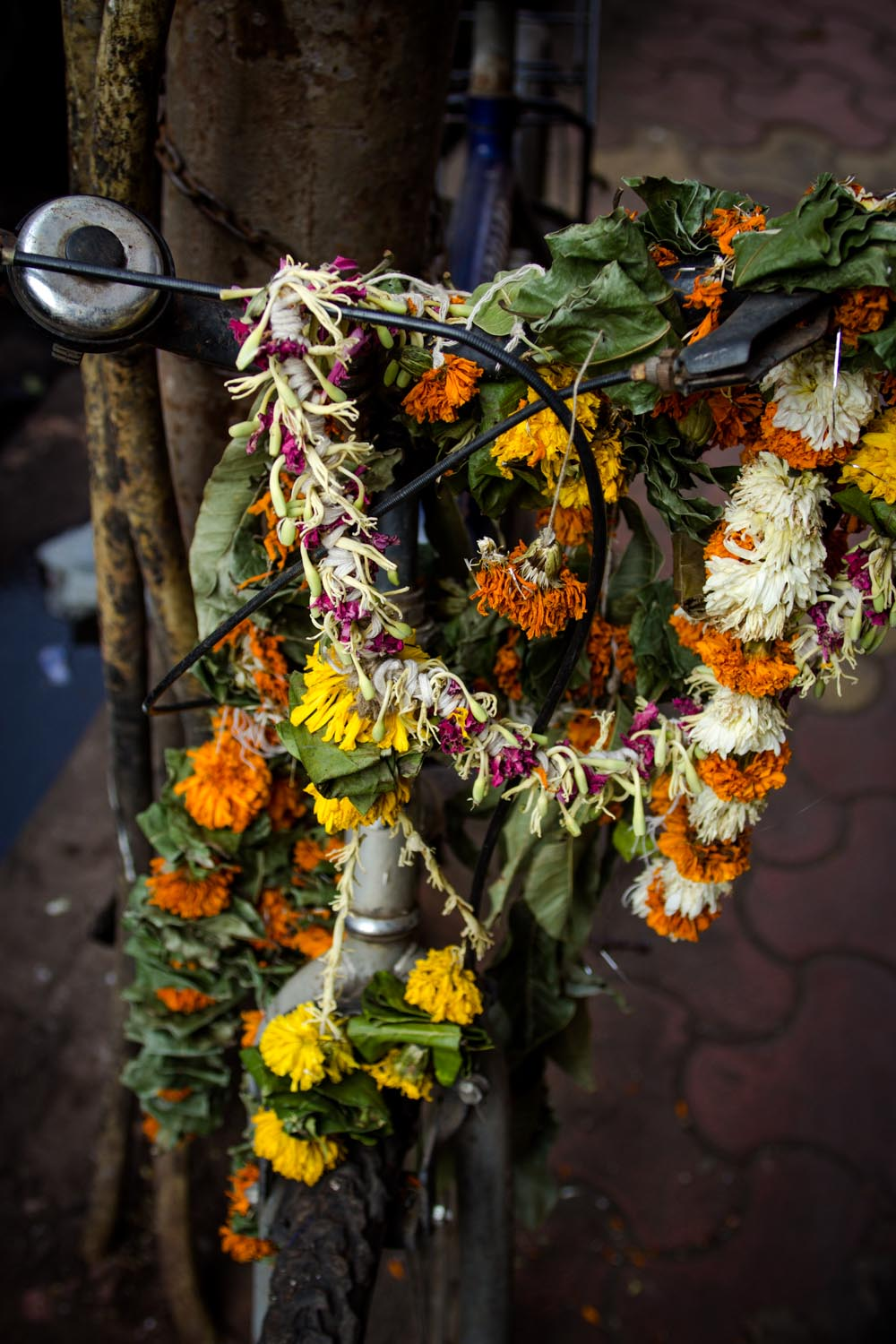 bicycle with garlands (close)