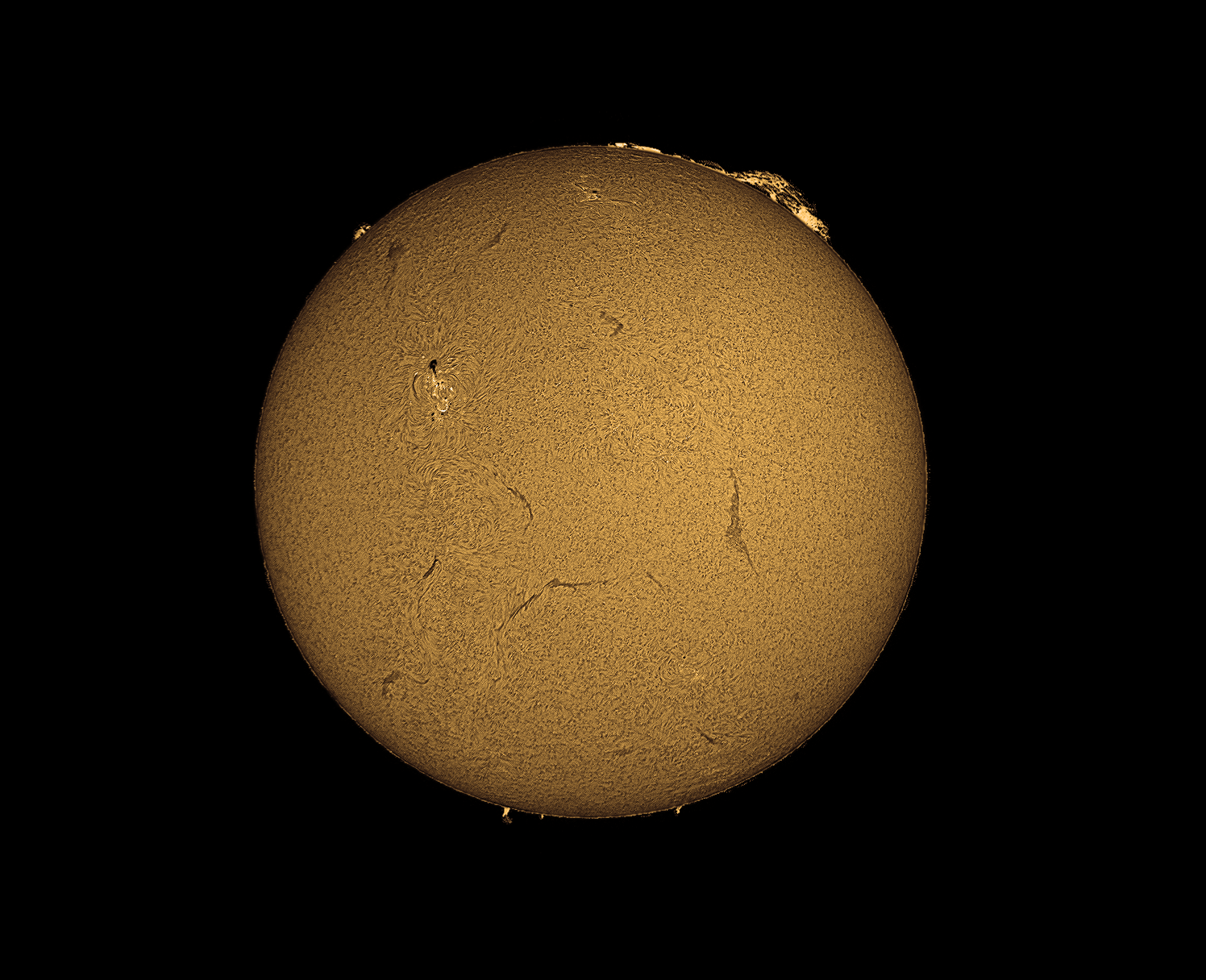 Sun - Our nearest star imaged with a 60mm Coronado Solarmax telescope and a Celestron Skyris 274mono camera.
