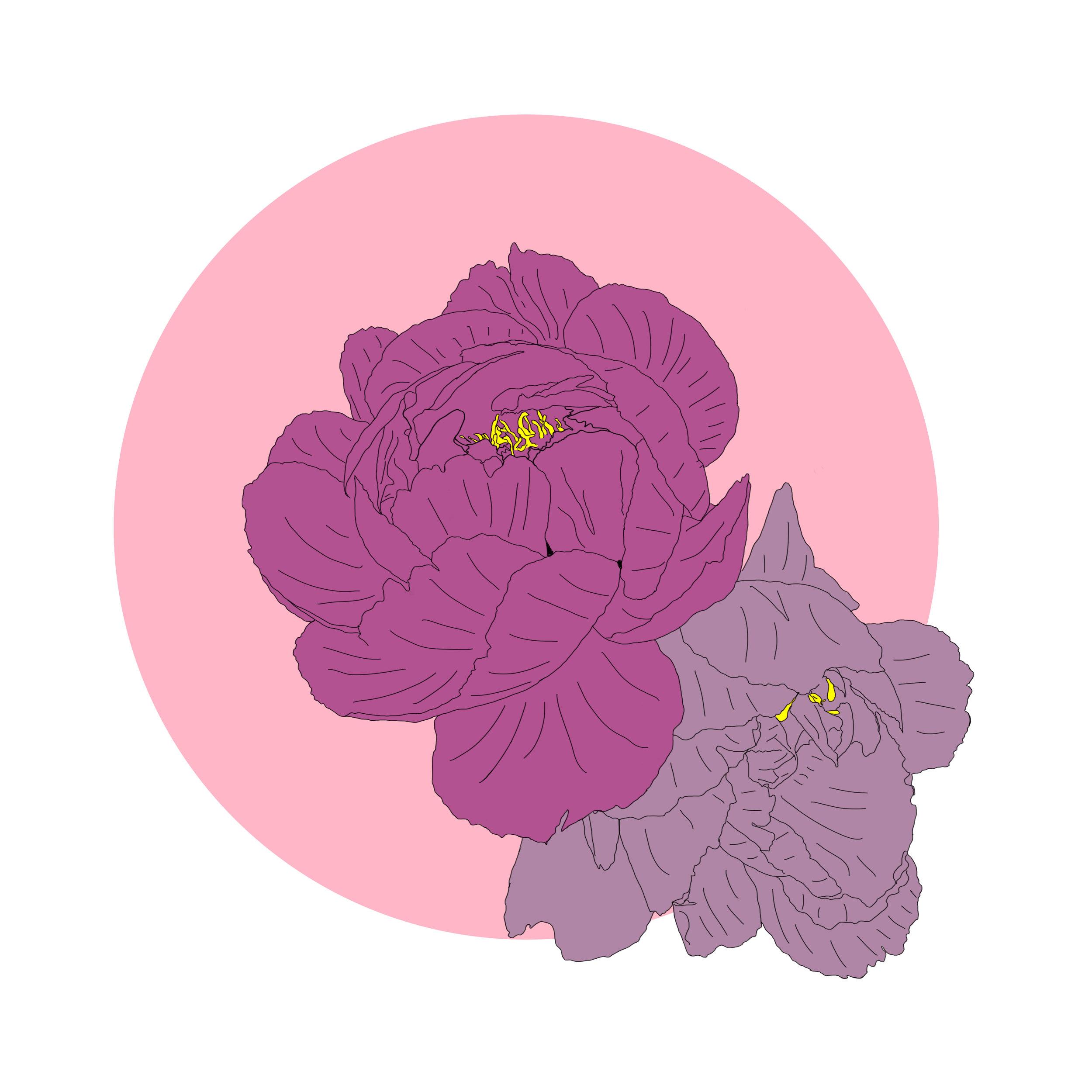 01_Flowers.jpg