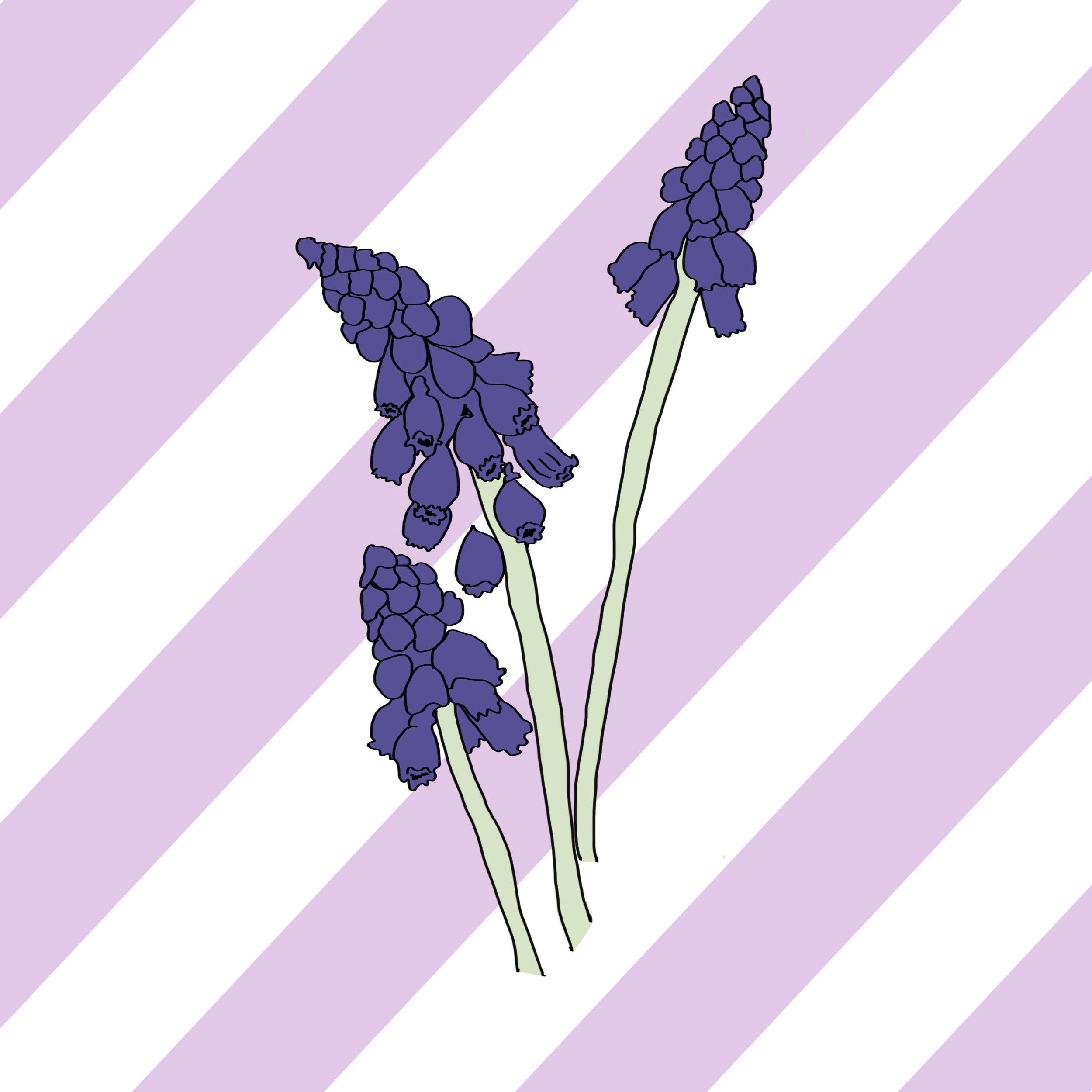 03_Flowers.jpg