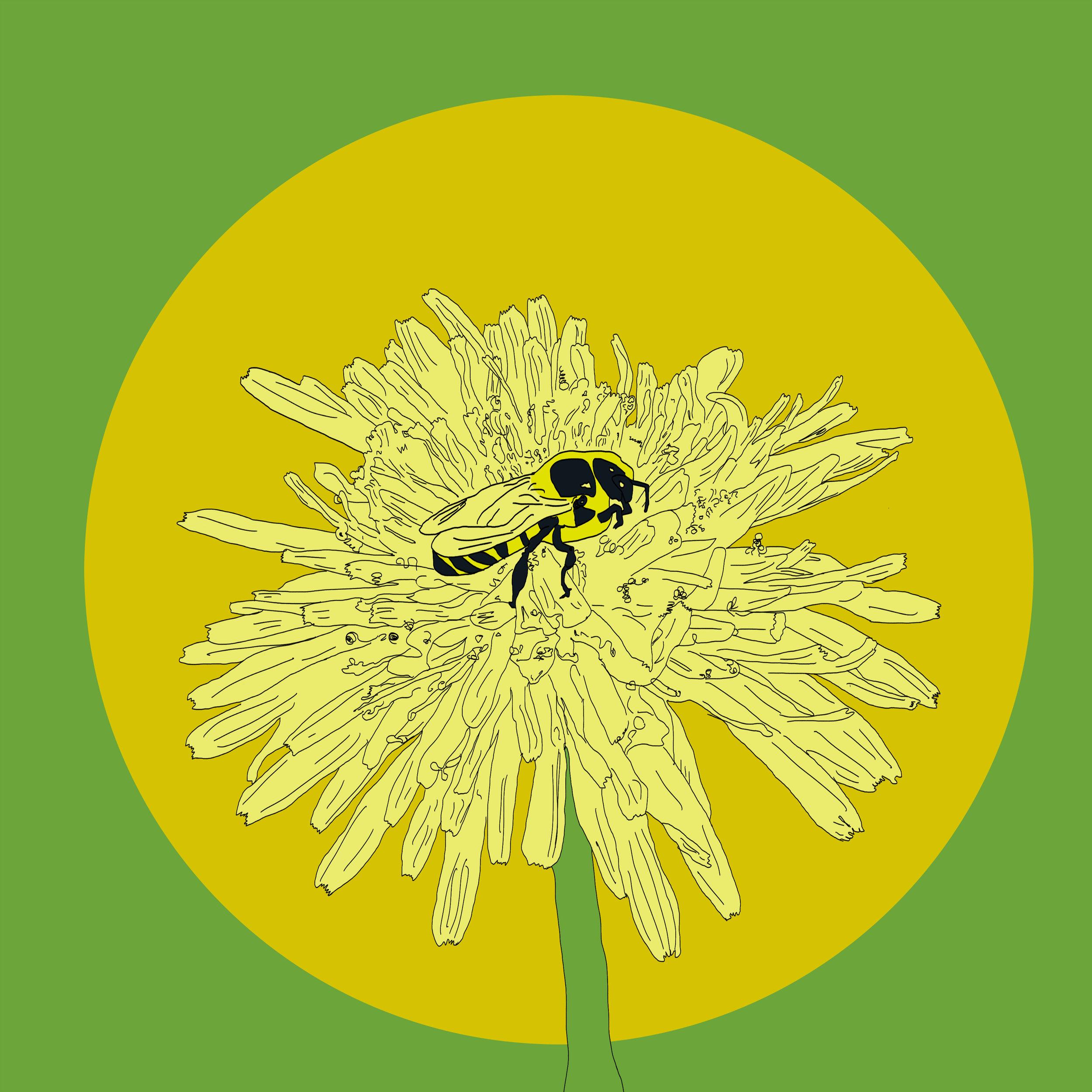 05_Flowers.jpg