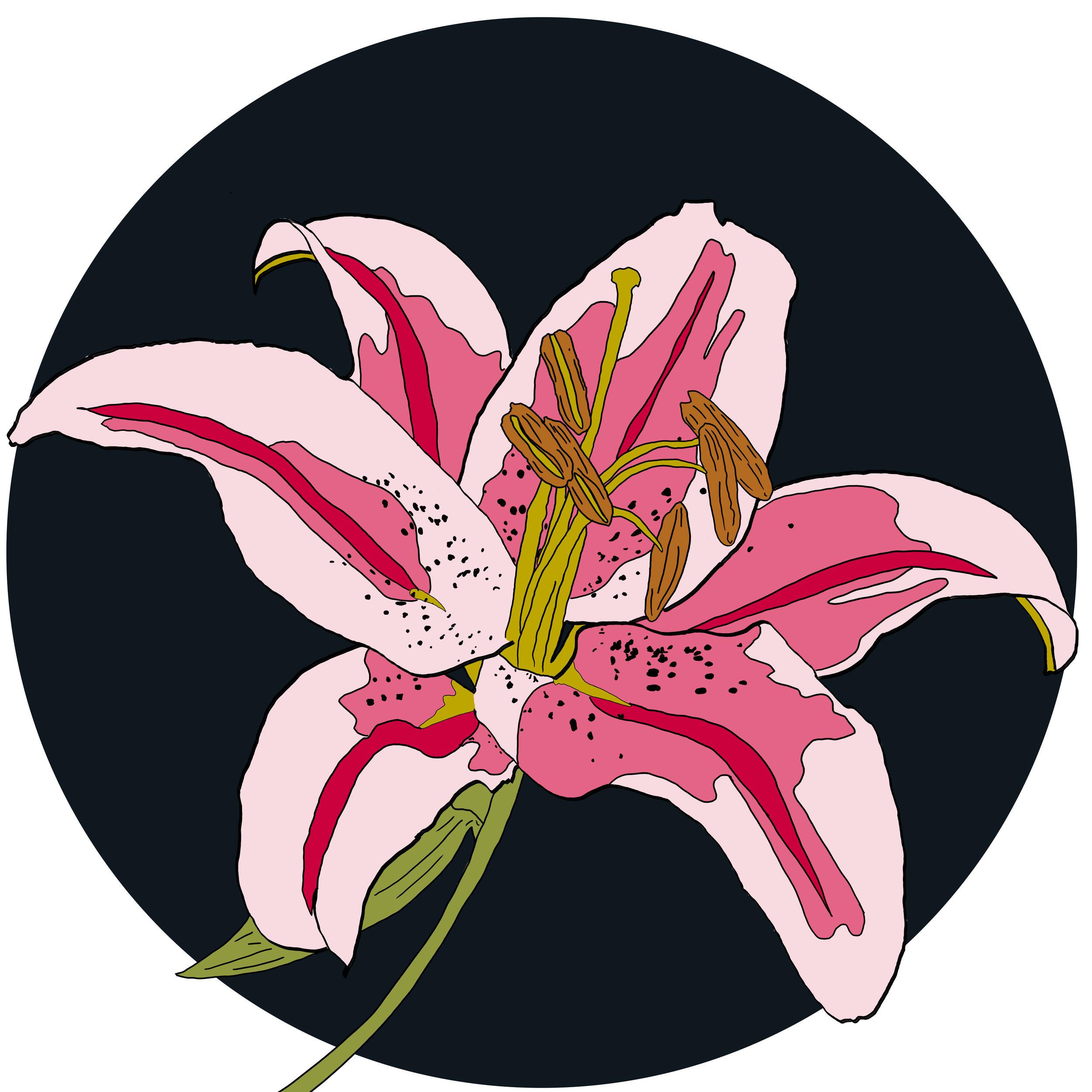 11_Flowers.jpg
