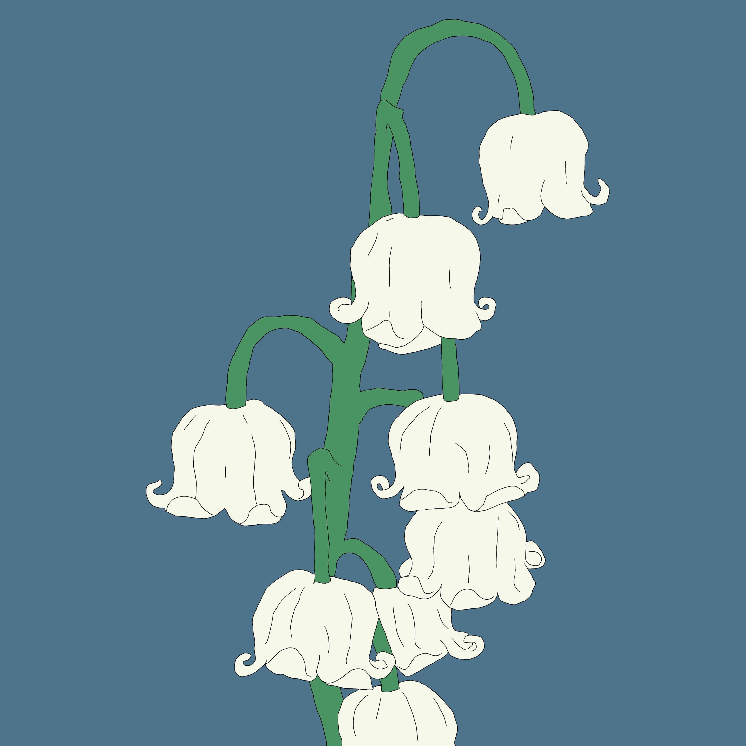12_Flowers.jpg