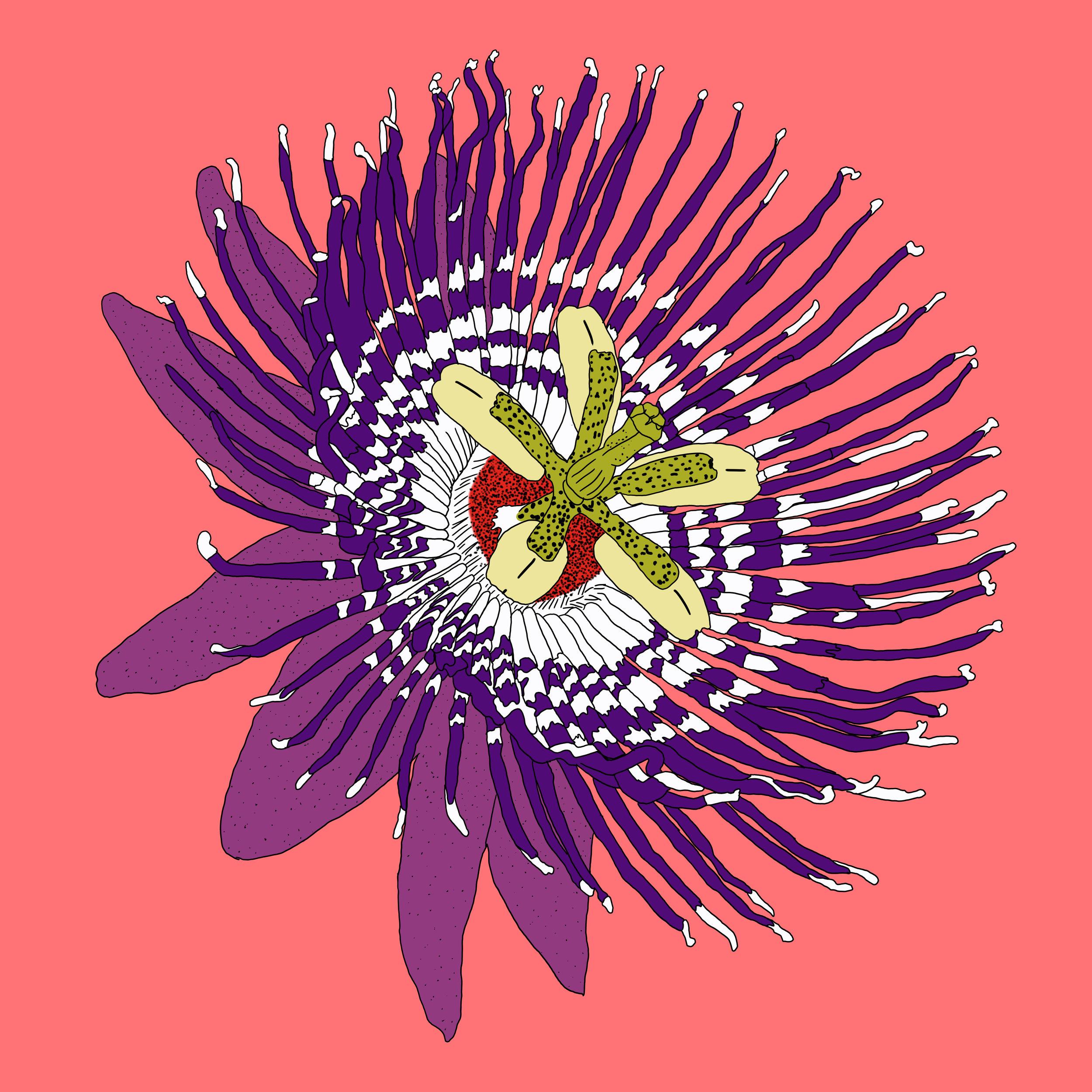 22_Flowers.jpg