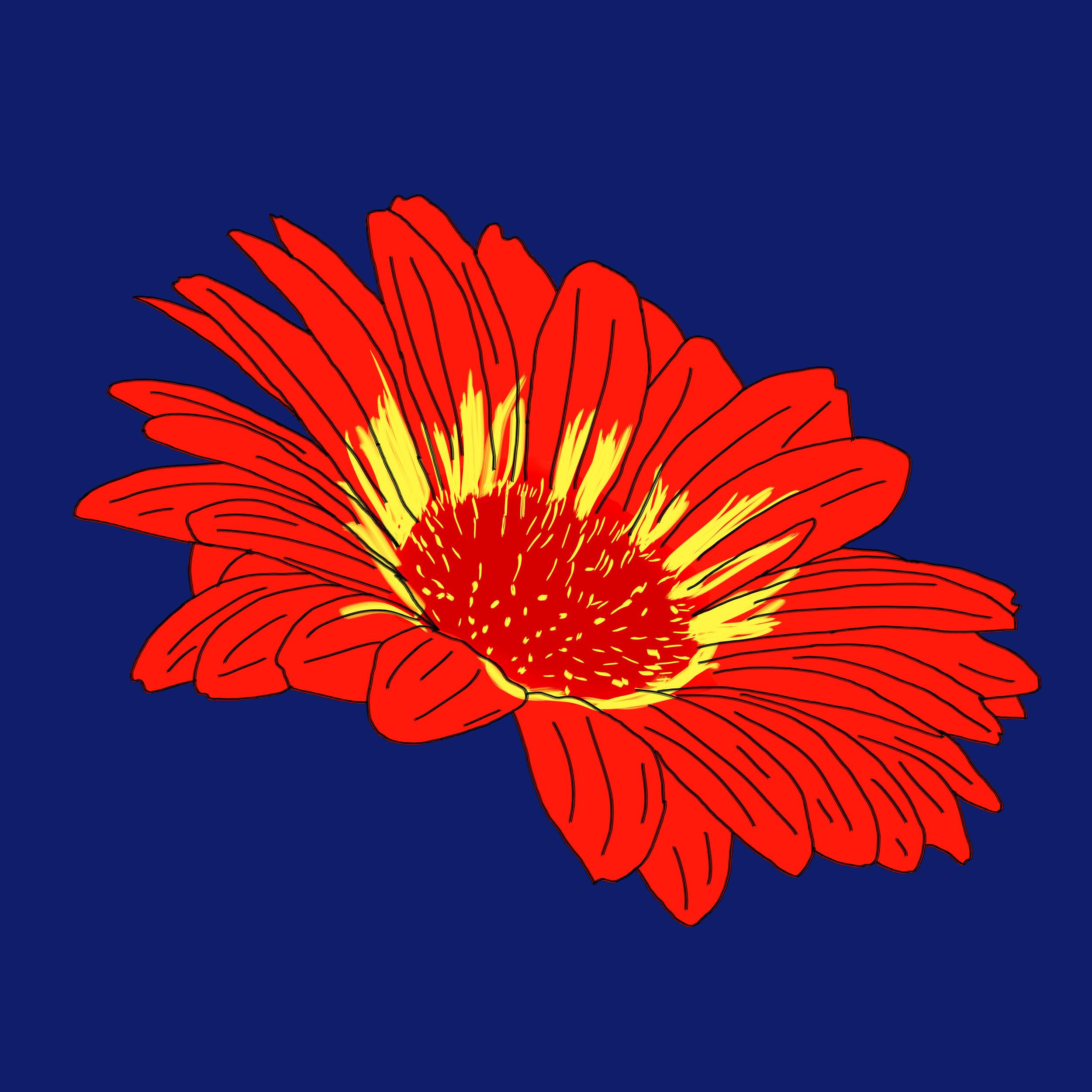 24_Flowers.jpg