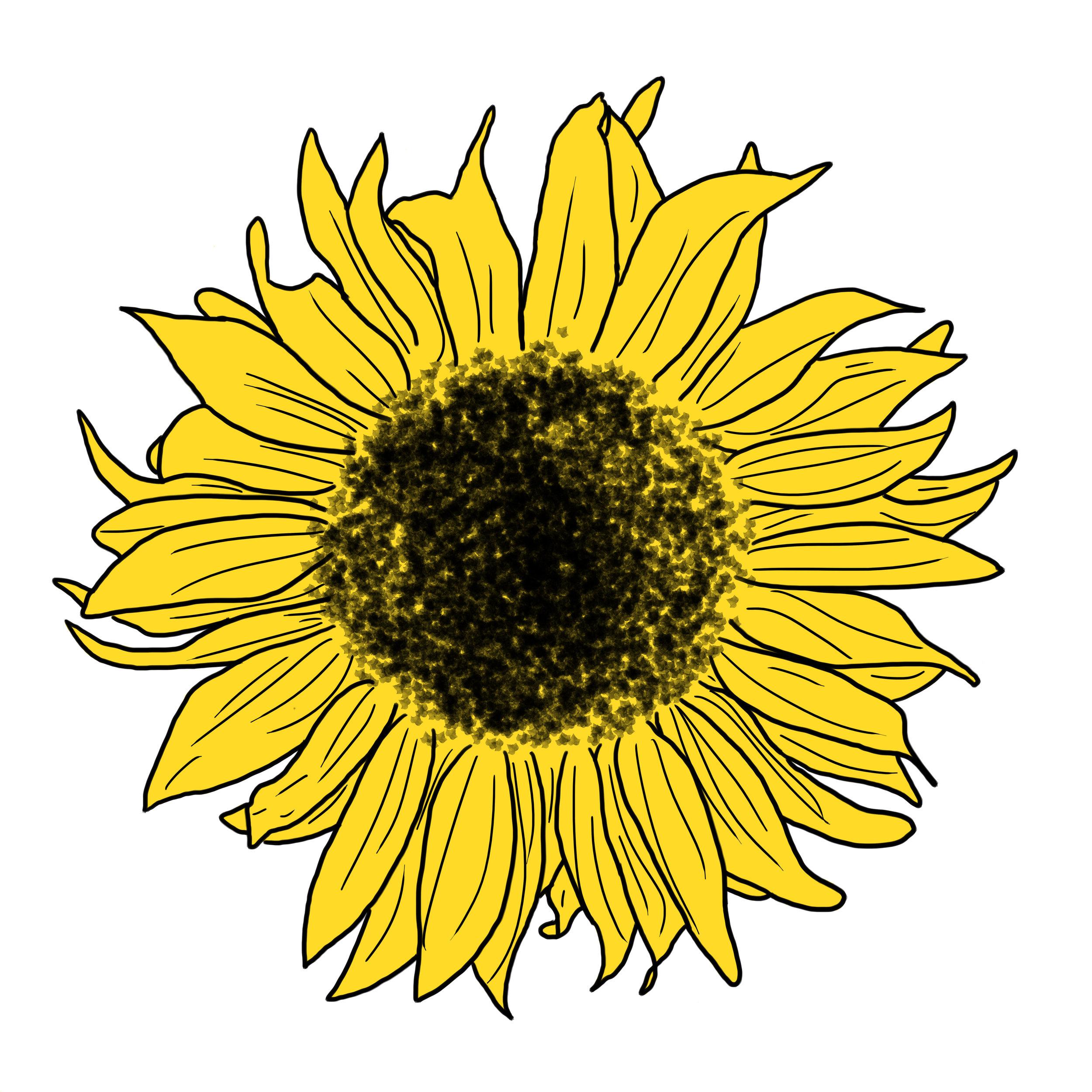 29_Flowers.jpg