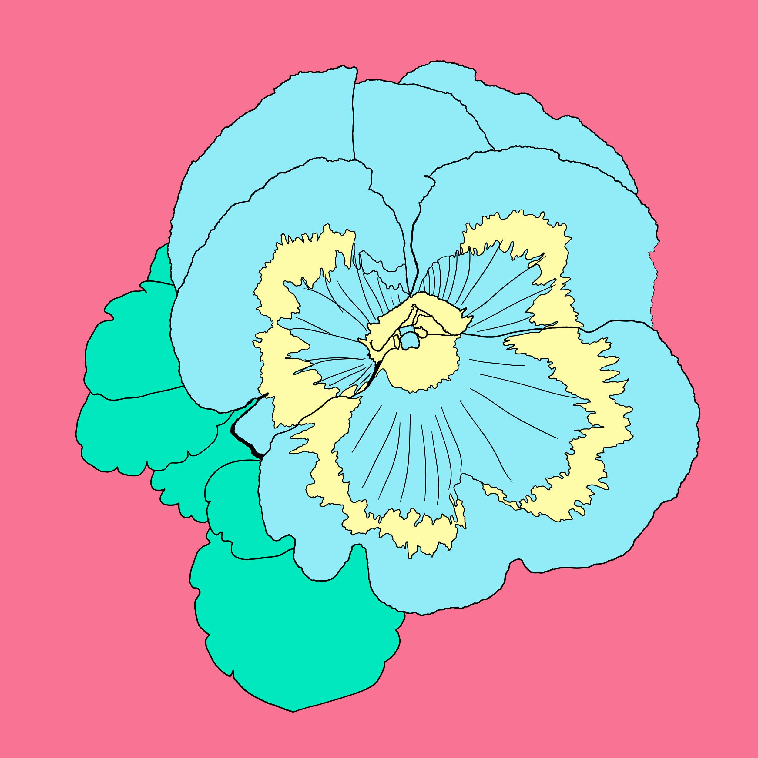 31_Flowers.jpg
