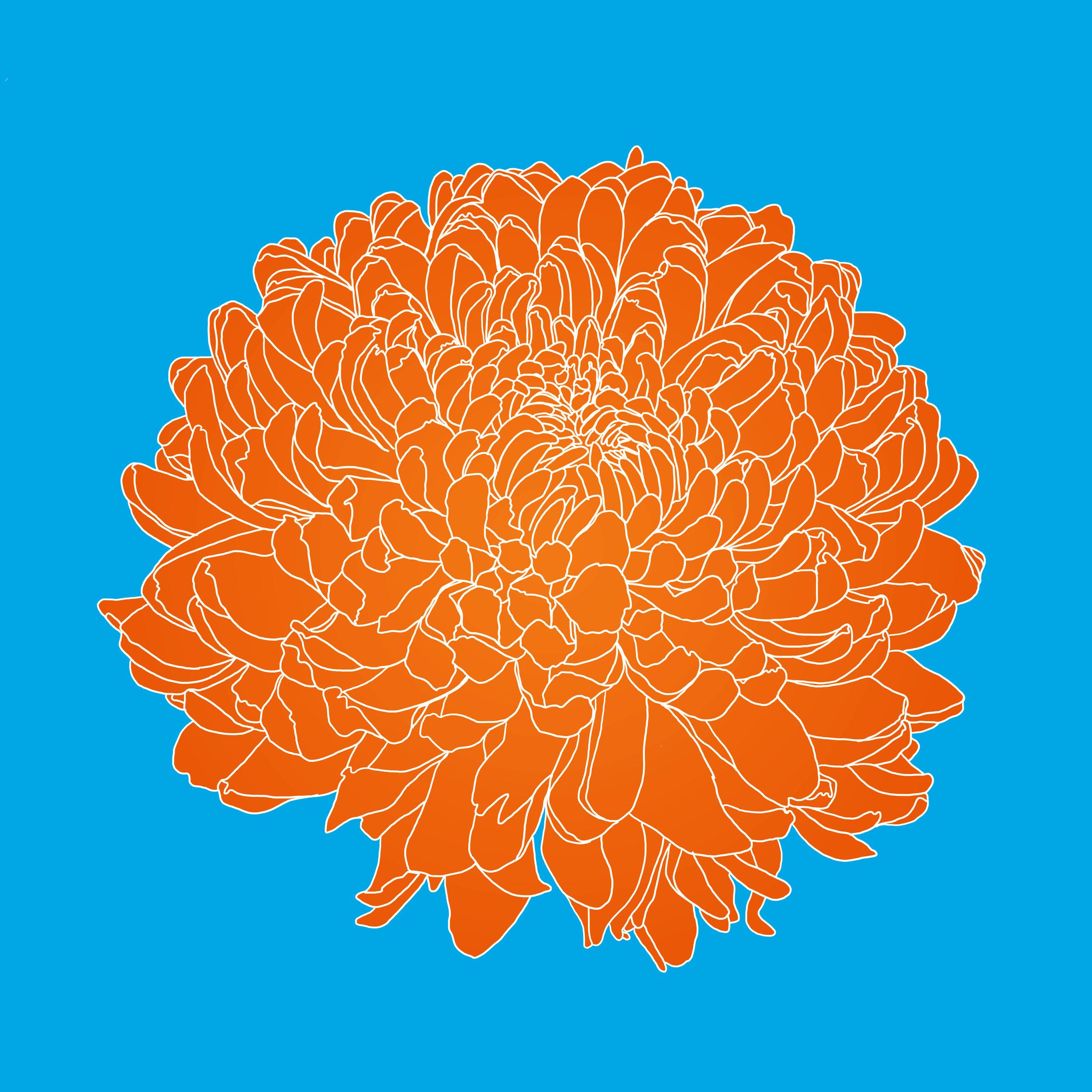 33_Flowers.jpg