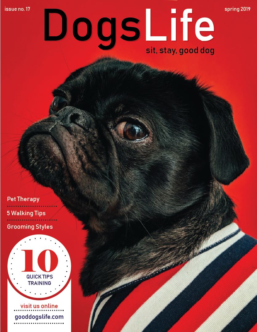 Magazine-Cover-Dogs-Life-Steve-Mack.png