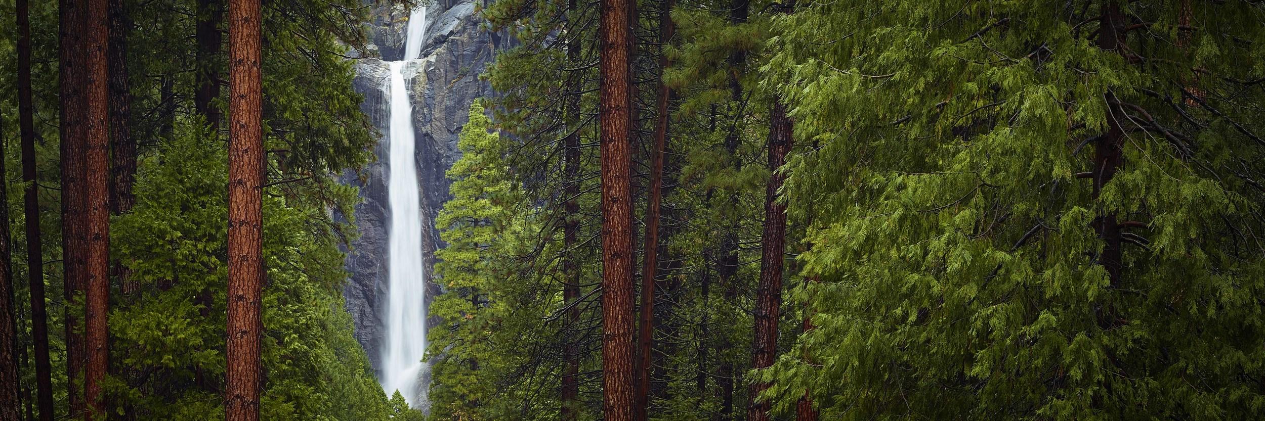 COUNCIL - Yosemite National Park, California