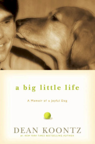 big-little-life_SIDEBAR.jpg