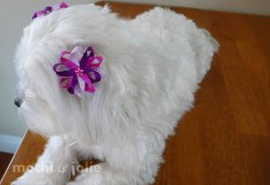 PurpleRain_web3.jpg