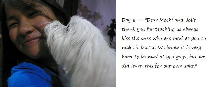 Day8_blog.jpg