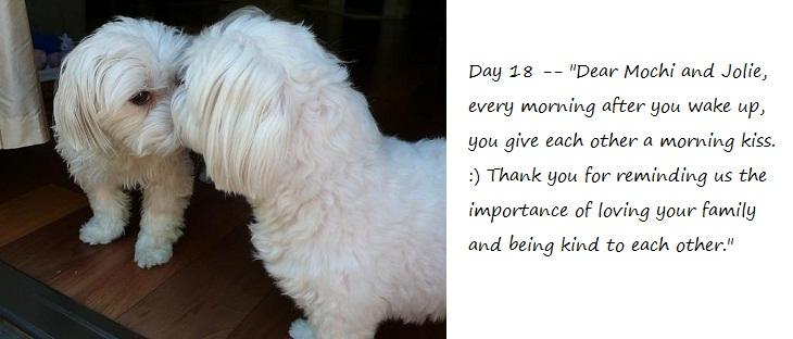 Day18_blog.jpg
