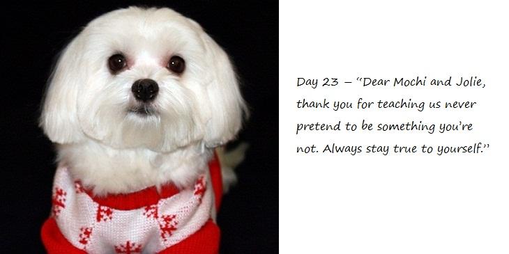 Day23_blog.jpg