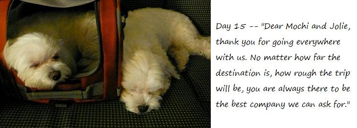 Day15_blog.jpg