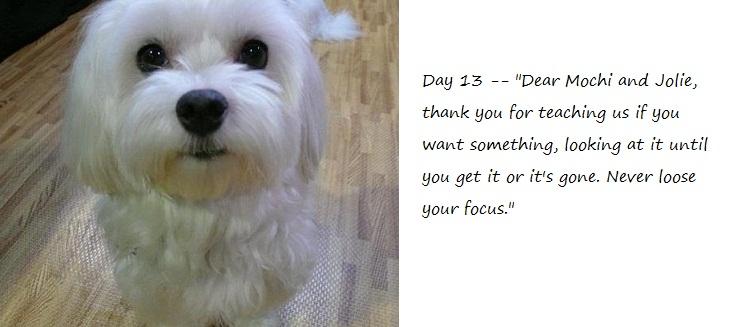 Day13_blog.jpg