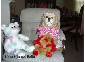 Coco Chanel Bella1.jpg