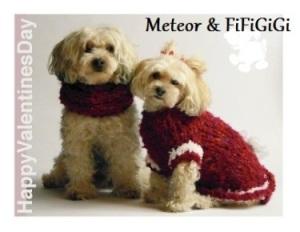Meteor and FiFiGiGi.jpg